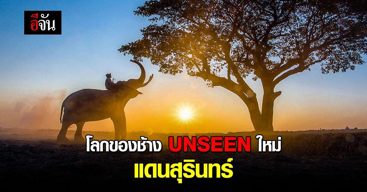 UNSEEN ใหม่ หมู่บ้านช้างตากลาง ที่ใหญ่ที่สุดในโลก จ.สุรินทร์