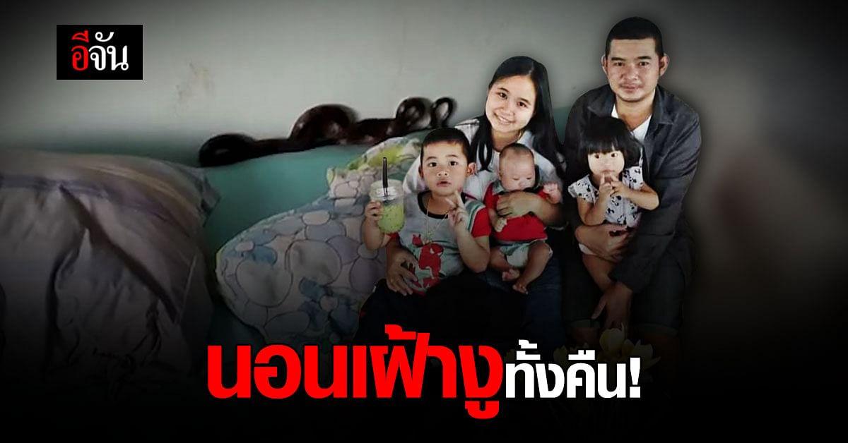 ช็อก! 5 พ่อแม่ลูกนอนเฝ้างูทั้งคืน รุ่งเช้าเจอขดใต้หมอน