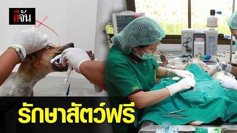 รมว.กษ. เปิดโครงการรถผ่าตัดสัตว์เคลื่อนที่ รองรับ พ.ร.บ.ป้องกันการทารุณกรรมฯ