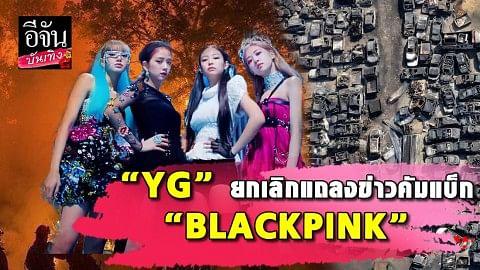 """ค่าย """"YG"""" ขอยุติการแถลงข่าวคัมแบ็กวง """"BLACKPINK"""" หลังเกิดเหตุไฟไหม้ป่าครั้งใหญ่ของเกาหลี"""