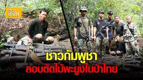 รวบชายกัมพูชา  ลอบตัดไม้พะยูง ในเขตรักษาพันธุ์สัตว์ป่า พนมดงรัก