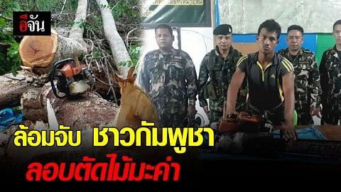 ล้อมจับ ชาวกัมพูชา ลอบตัดไม้มะค่า ขสป.ยอดโดม