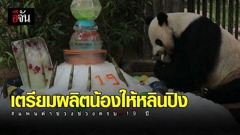 สวนสัตว์เชียงใหม่ จัดงานวันเกิดช่วงช่วง อายุ 19 ปี