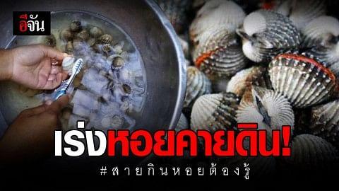 จะกินหอย หอยต้องสะอาด อีจันแนะ เร่งหอยแครงคายดิน