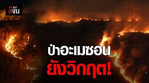 ไฟไหม้ป่าอะเมซอน เพิ่มมากกว่าเดือนที่แล้ว 3 หมื่นกว่าครั้ง สหประชาชาติเร่งแก้ไข