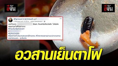 แทบช็อค! เจอไข่แมลงสาบในเย็นตาโฟ... อวสานอาหารมื้ออร่อย