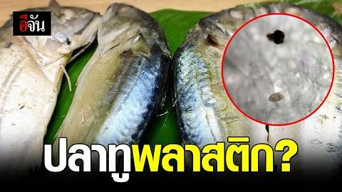 กินปลาทูเข้าไปจะเป็นอันตรายไหม? หลังพบไมโครพลาสติกในท้องปลาทู