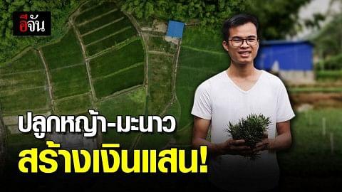 วัยรุ่นจีน แห่ปลูกหญ้า-มะนาว สร้างรายได้หลายแสน