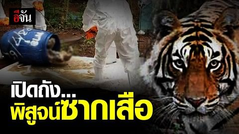 กรมอุทยานฯ เปิดถังพิสูจน์ซากเสือของกลาง วัดป่าหลวงตาบัว