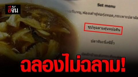 WildAid Thailand ช่วยสัตว์ป่า โพสต์ รณรงค์ฉลองไม่เสิร์ฟหูฉลาม