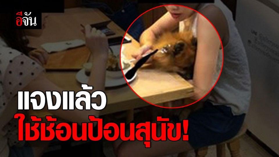 วิจารณ์หนัก สาวใช้ช้อนป้อนขนมหวานสุนัข
