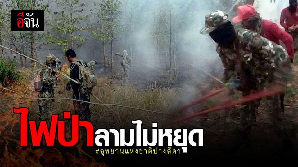 ไฟไหม้ป่าในอุทยานแห่งชาติปางสีดา ยังโหมไม่หยุด  เสียหายแล้วกว่า 500 ไร่