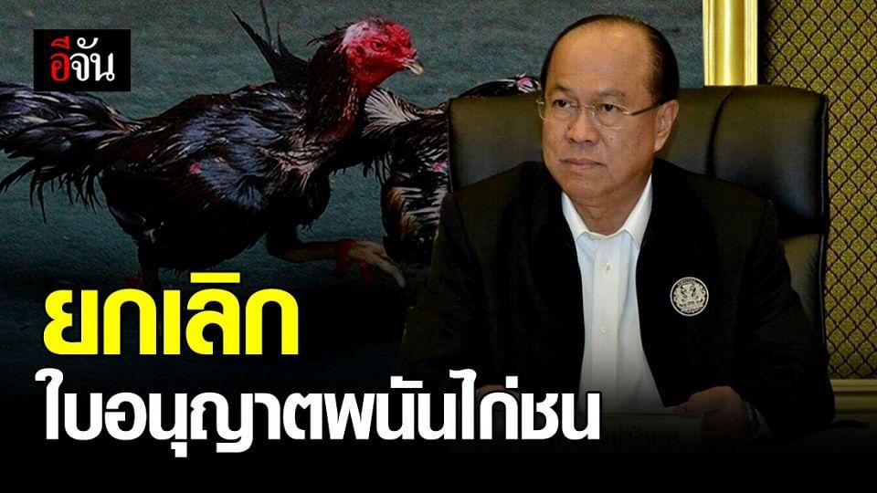 รัฐมนตรี มท. สั่ง ยกเลิกใบอนุญาตพนันไก่ชน เลี่ยงการรวมตัวของประชาชน