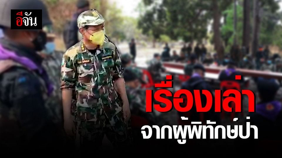 ผู้พิทักษ์ป่า กับการปกป้องต้นไม้ของประเทศไทย