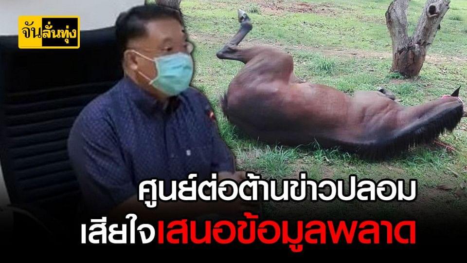 ม้าตายเฉียบพลันเพราะกาฬโรคม้าระบาด ไม่ใช่ข่าวลอม!