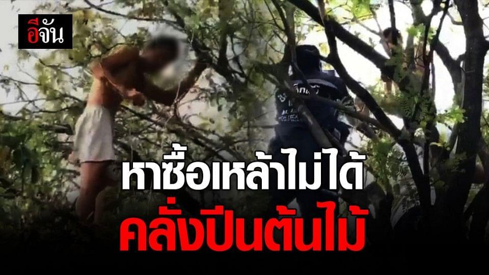 ชาย 35 ปี คลั่งปีนต้นไม้สูง 6 เมตร หลังขาดเหล้าหาซื้อไม่ได้