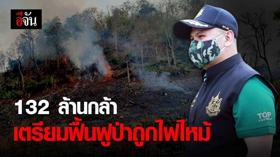 ทส.ร่วมกับหมู่บ้านเครือข่าย 802 หมู่บ้าน ร่วมฟื้นฟูป่าที่ถูกไฟไหม้