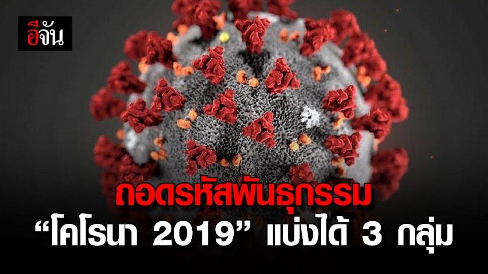 ไวรัสโคโรนา 2019 กลายพันธุ์ได้เป็น 3 กลุ่ม
