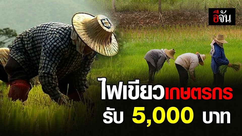 ครม. เคาะแล้ว เกษตรกรรับ 5,000 บาท นาน 3 เดือน ไม่ต้องลงทะเบียนขอรับเงิน