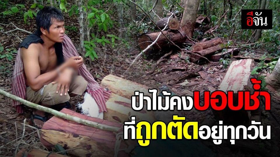 จับชาวกัมพูชา ลอบข้ามแดนมาตัดไม้ในเขต ขสป.ห้วยศาลา