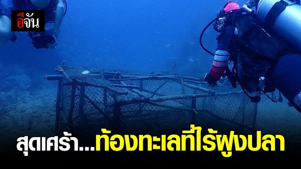 เรื่องเล่าจากความรู้สึกนักดำน้ำ กองหินชุมพร ในวันที่ไม่มีฝูงปลาแหวกว่าย
