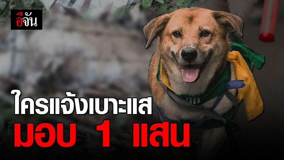 ใครแจ้งเบาะแสขบวนการอุ้มฆ่าเตี้ย มช. กลุ่มคนรักหมามอบ 1 แสนบาททันที!