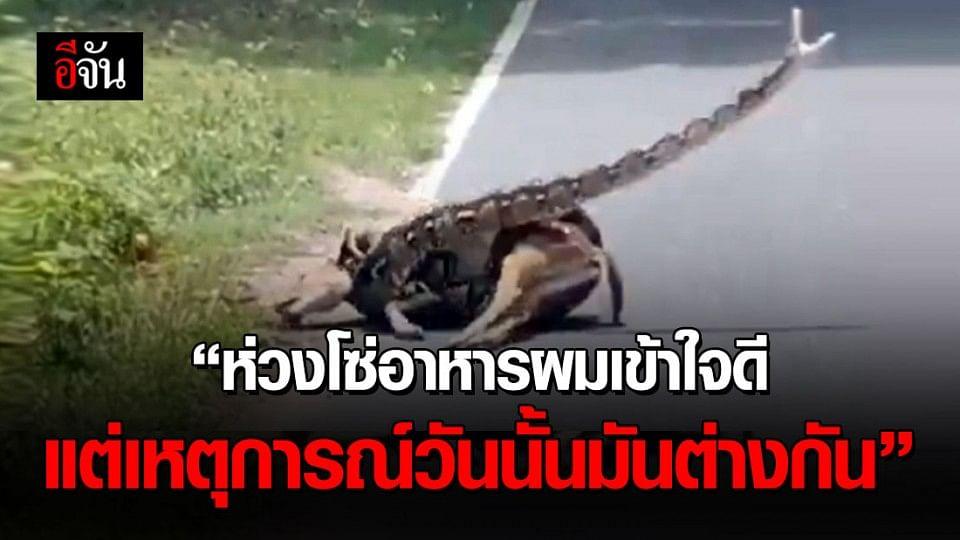 เปิดใจ นักวิชาการสวนสัตว์ หลังช่วยกวางจากงูรัดในสวนสัตว์