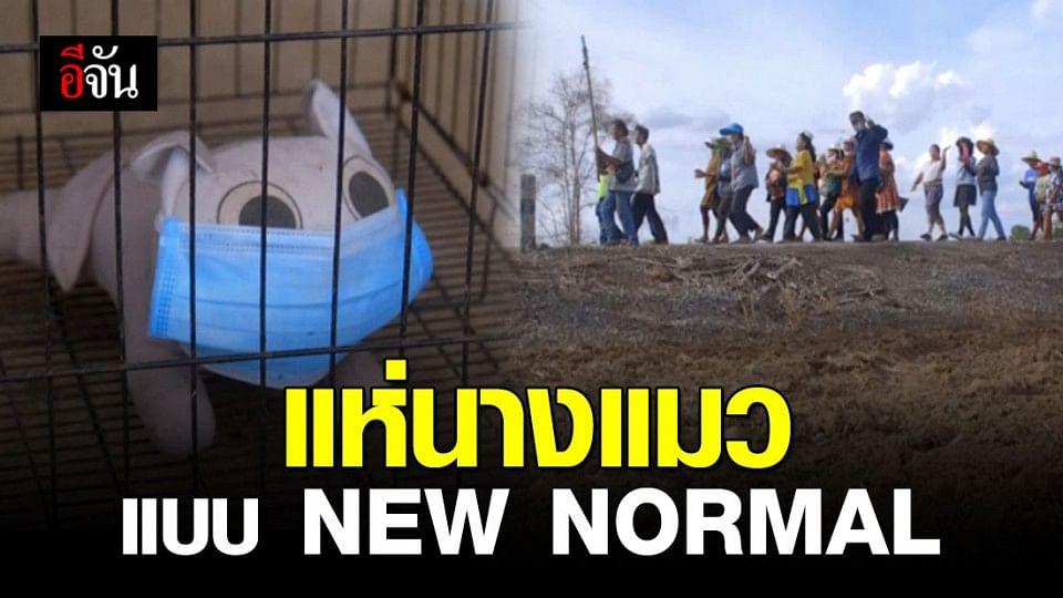 ชาวพิจิตรคึกคัก! แห่ตุ๊กตานางแมวขอฝน แบบ NEW NORMAL ป้องกันโควิด-19