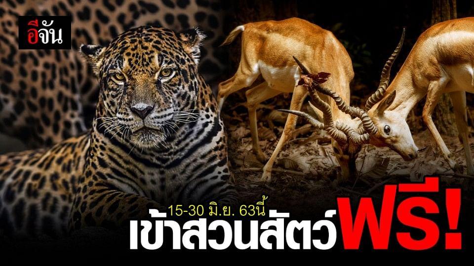 เข้าสวนสัตว์วิถีใหม่ เข้าฟรีทั่วไทย ดีเดย์ 15 มิ.ย. นี้