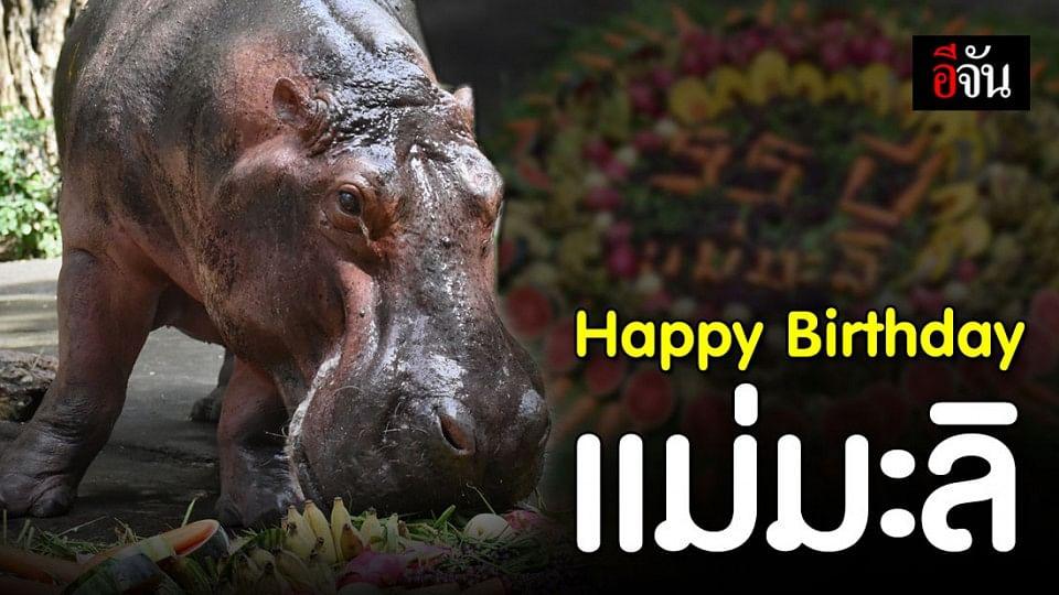สุขสันต์วันเกิด แม่มะลิ! นักท่องเที่ยวแห่อวยพร แน่นสวนสัตว์เปิดเขาเขียว