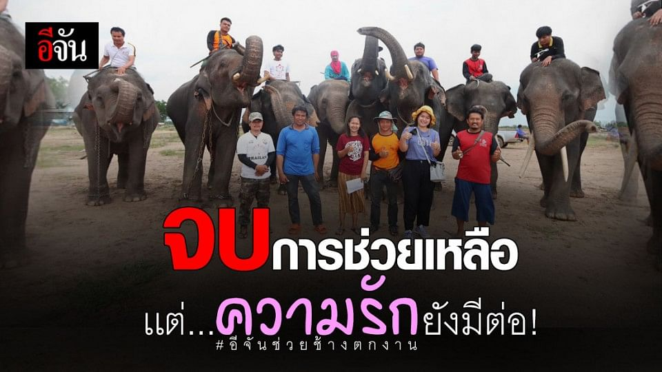 สิ้นสุดโครงการสังคมอีจันช่วยช้างตกงาน จ.สุรินทร์ ชาวช้างน้ำตาคลอ ยกมือขอบคุณด้วยหัวใจ