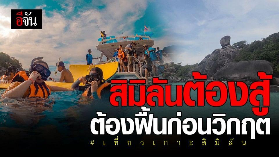 sea star เรือนำเที่ยว เกาะสิมิลัน ขอฮึดสู้วิกฤต ลดราคาแพ็กเกจ ดันไทยเที่ยวไทย