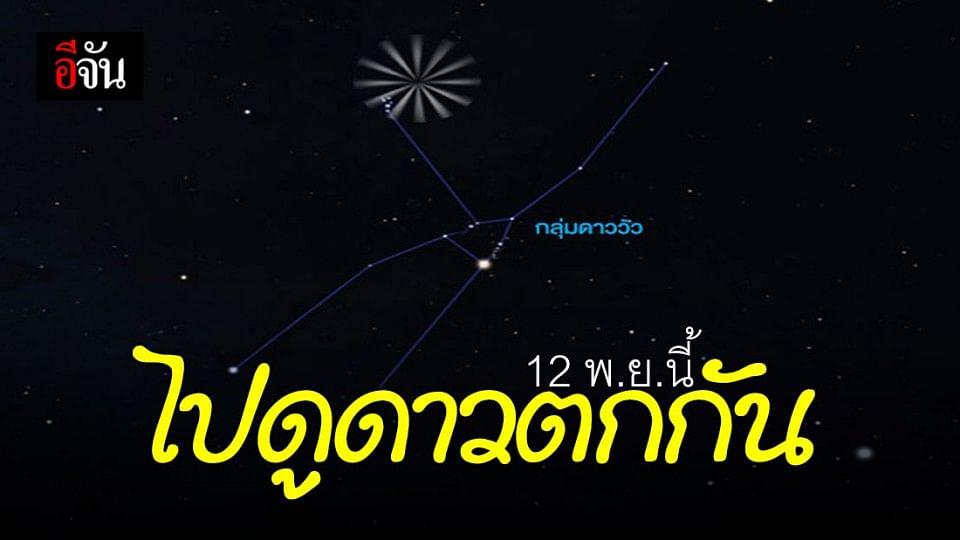 พรุ่งนี้ (12 พ.ย.63) ไปดู ฝนดาวตก ทอริดส์เหนือ กันไหม ?