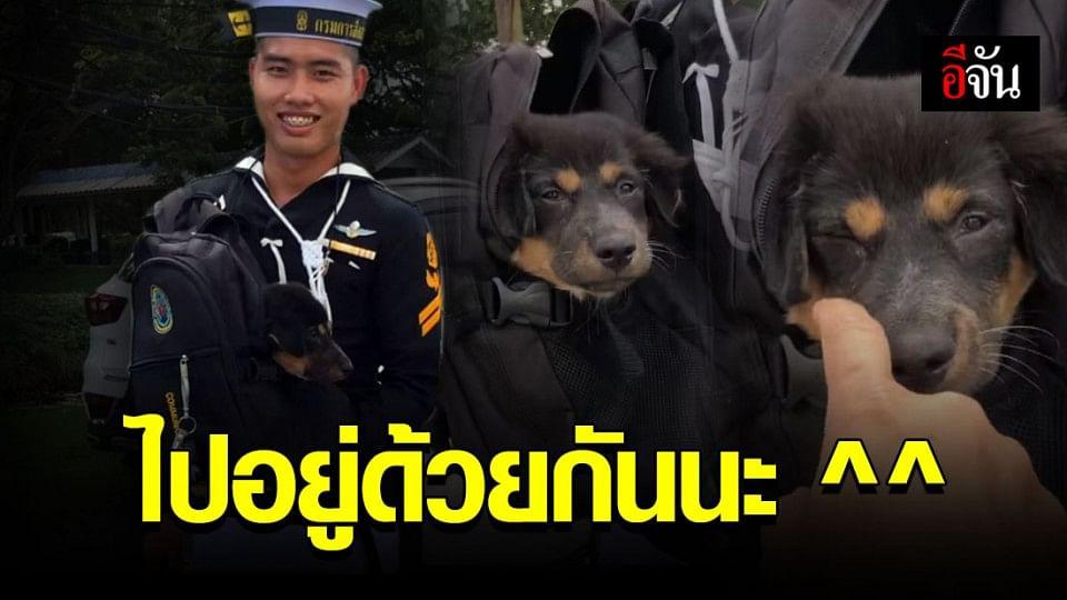 มาเรียน จ่าทหารเรือ อย่างไรให้ได้ ลูกหมา กลับบ้าน !