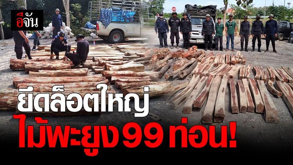 ทหารจันทบุรี จับไม้พะยูง 99 ท่อน เตรียมส่งข้ามชายแดน