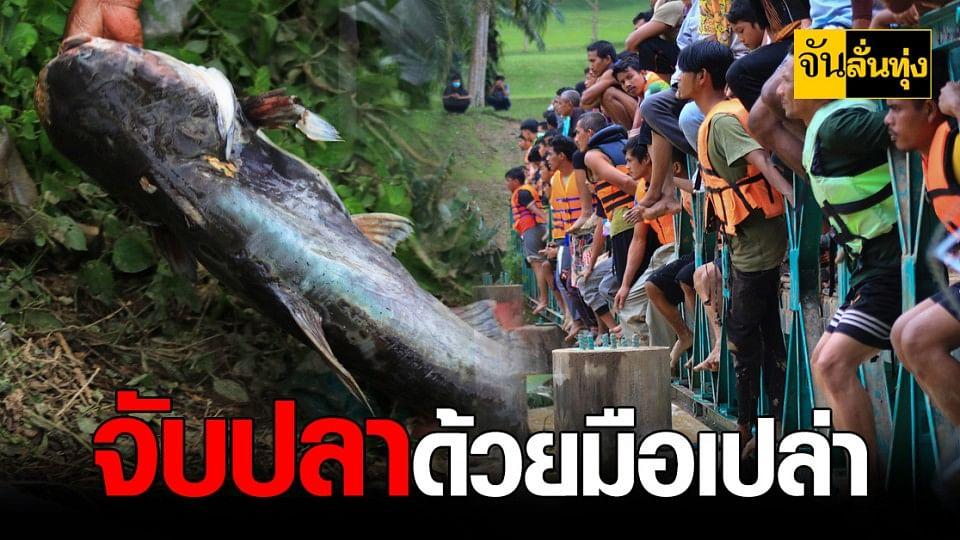 ยะลา ระทึก ตะลุยลุยจับ ปลาบึก ไม่หวั่น น้ำเชี่ยว