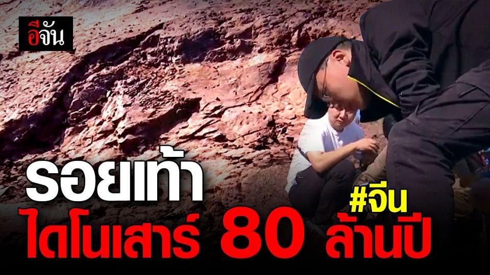 ภาพหาดูยาก! นักวิทยาศาสตร์จีน พบ รอยเท้าไดโนเสาร์ 80 ล้านปี