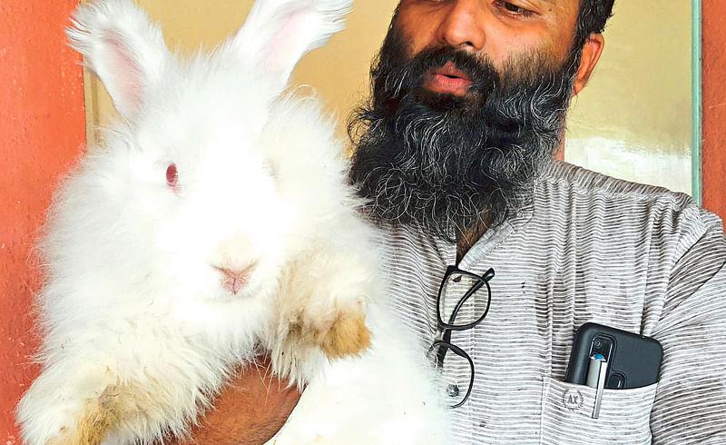 Rabbit farm has been started in Nashik