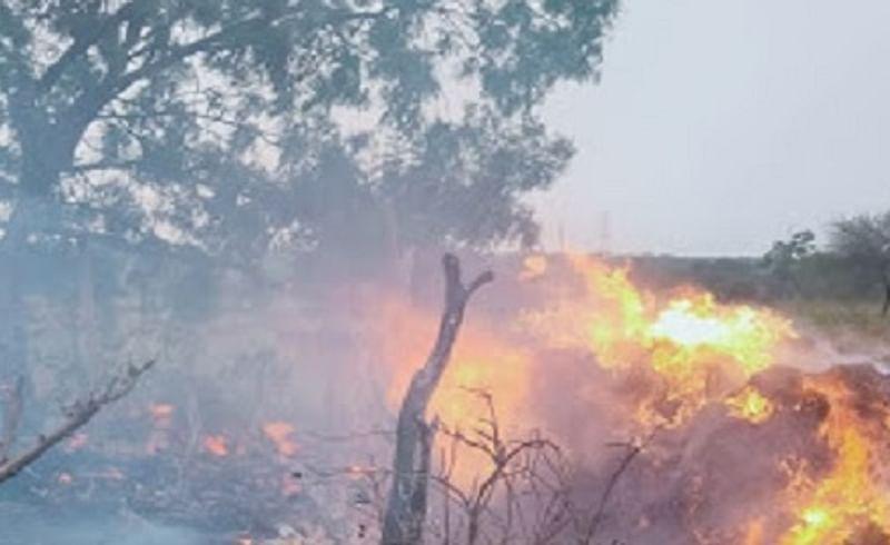 वीज कोसळून लागली आग; शेतकरी बचावला, लाखोंचे नुकसान