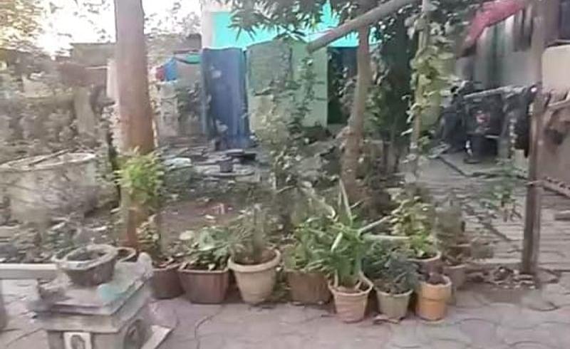 एक विद्यार्थी तीस झाडे
