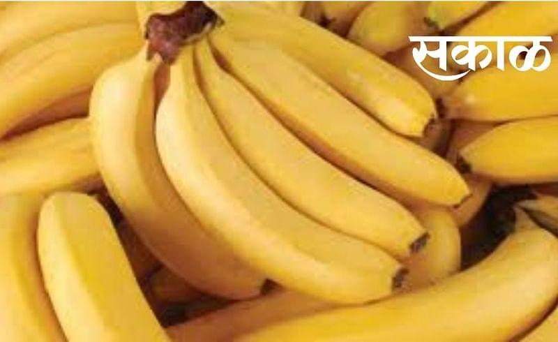 जळगावची केळी जाणार पाकिस्तानात