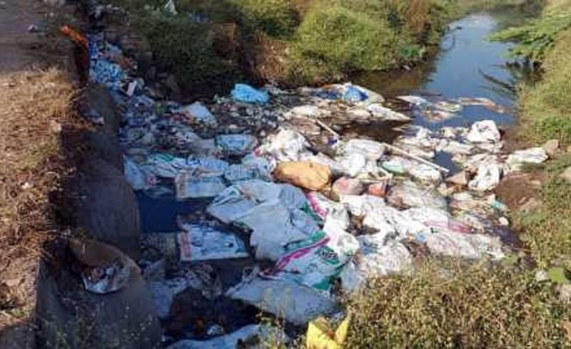 Dead hens are found in river in Nagpur District