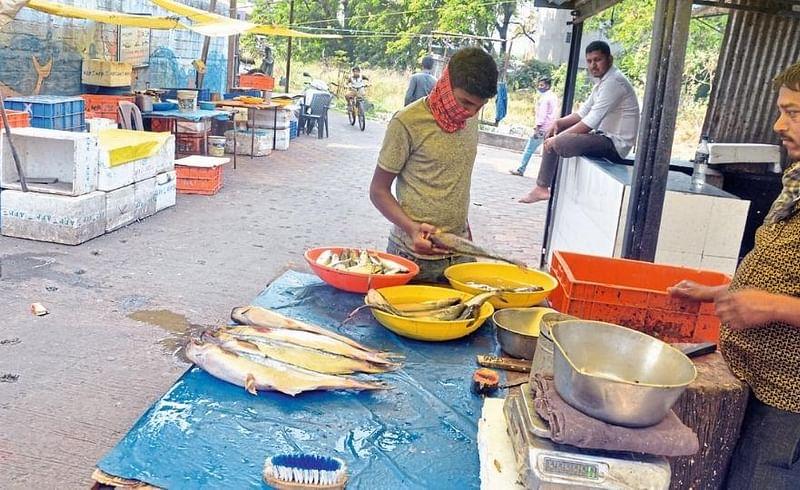 Fish Arrivals Fell By 40 Percent Kolhapur Marathi News