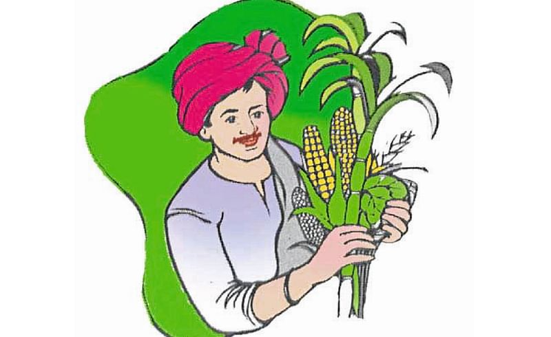 Farmers Worry About Server Down Kolhapur Marathi News