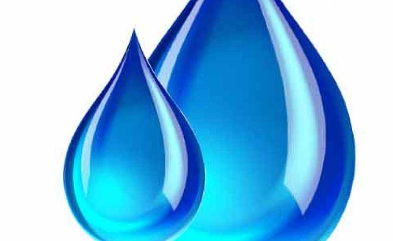 Sina and Bhogavati to join water struggle committee
