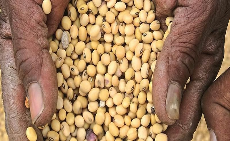 Rates of Soyabeen are over 7 thousand but farmers not getting enough money