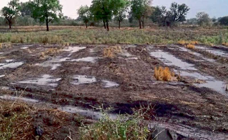 तळणी (ता. मंठा, जि. जालना) - जालना जिल्ह्यात काही भागांत शनिवारी वादळी वाऱ्यासह जोरदार बेमोसमी पाऊस झाला. तळणी येथे पावसानंतर शेतात साचलेले पाणी.