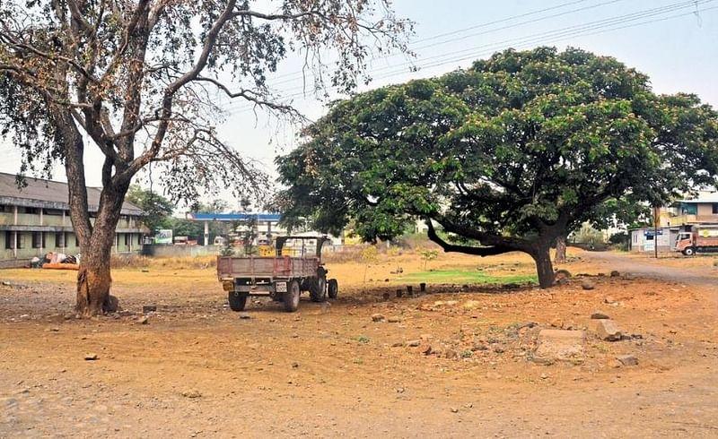 Gadhinglaj Weekly Market Turnover Of Half A Crore Stalled Kolhapur Kolhapur Marathi News