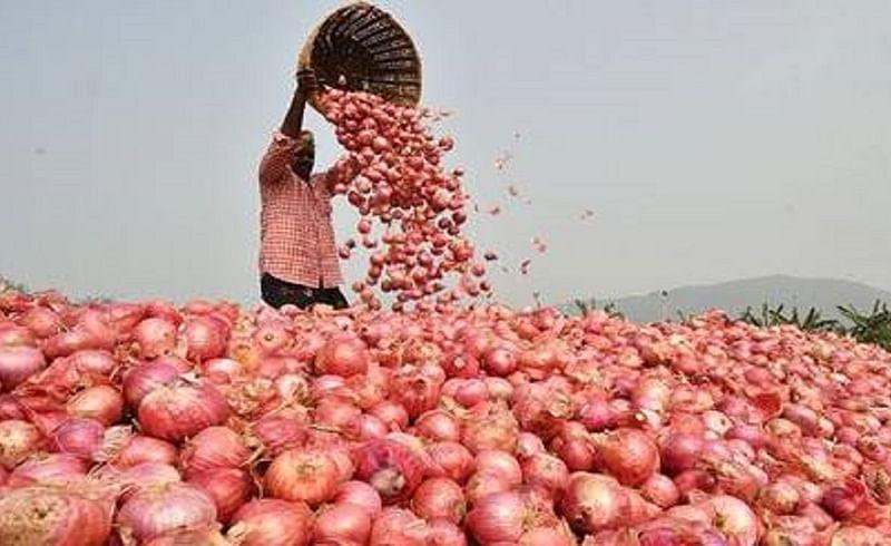 onion market.jpg