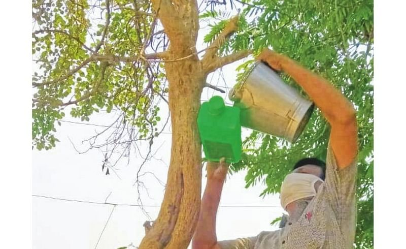 The concept of a water pot for birds Nagpur rural news